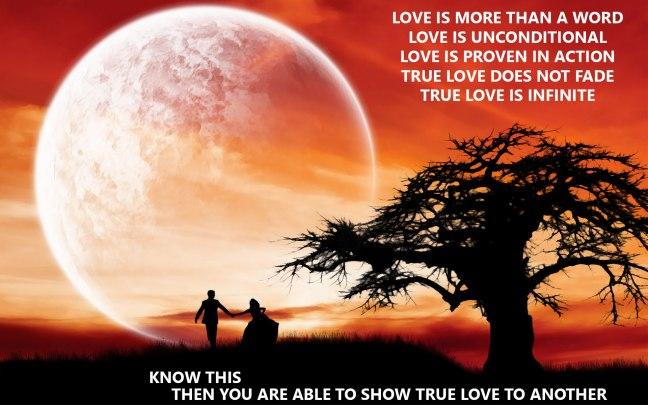 Whole-Love.jpg